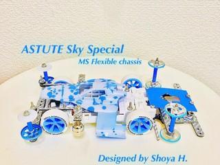 Astute Sky SP(MS Flexible)